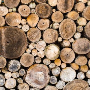 Brighton Chimney Sweeps logs-kindling